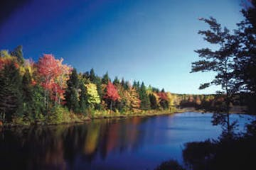 Saco River, Maine Fall Foliage Tour with New England EcoAdventures