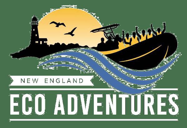 New England Eco Adventures