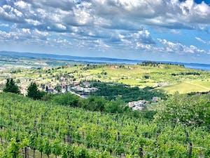 La regione vinicola della Valpolicella con vista sul lago di Garda