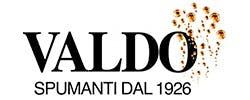 Valdo Logo