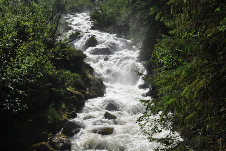 rushing river through forest in Alaska