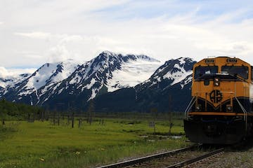 Train in front of snowy mountains and green field