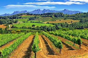 Views of Montserrat from el Penedes