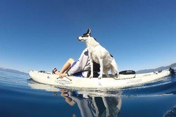 man and dog on kayak