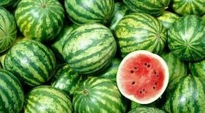 muitas melancias frutas
