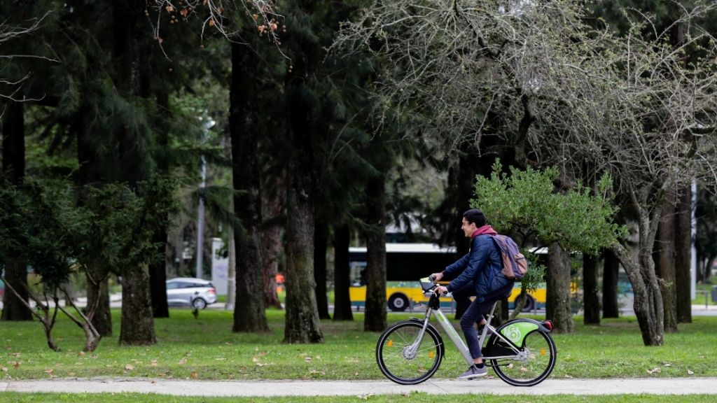 a person riding a bicycle in a park