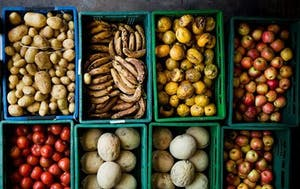 a box filled with different types of fruit