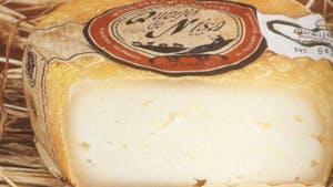 Queijo de Nisa, PDO Portuguese cheeses