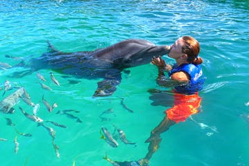A Coral World employee kisses a dolphin