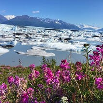 Adventure tours of the Alaskan backcountry