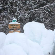 Tour Alaska's Iditarod Trail