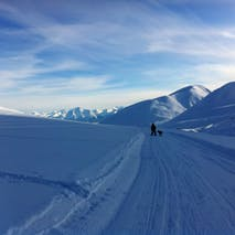 Backcountry adventure tours in Alaska