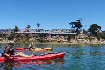 People kayaking along the shore