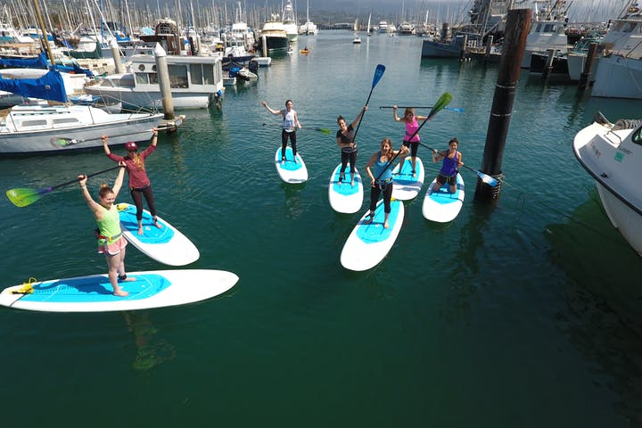 Group of people on stand up paddle boards near the marina