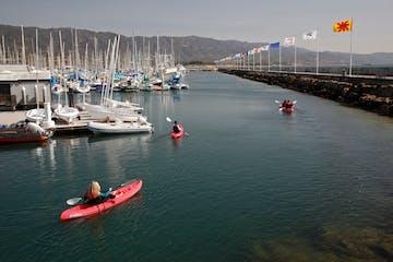 Group of people on kayaks near the marina