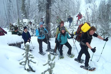 Group snowshoeing through the woods