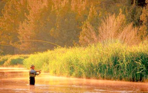 Park city fly fishing utah pro fly fishing for Park city fly fishing