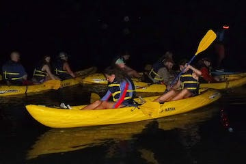 kayakers in a bioluminescence bay at night