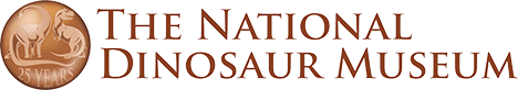 The National Dinosaur Museum