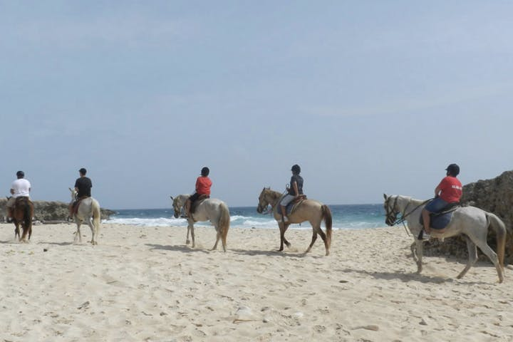 A group of horseback riders on the beach