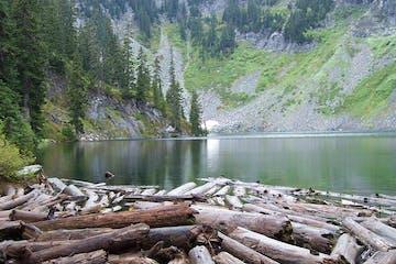 Humpy Creek