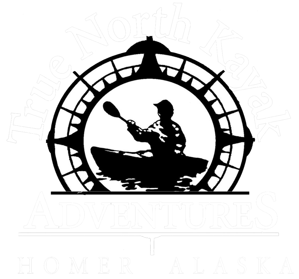True North Kayak Adventures | Homer Kayaking, Water Taxi, & More