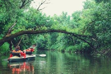 A group on a kayak