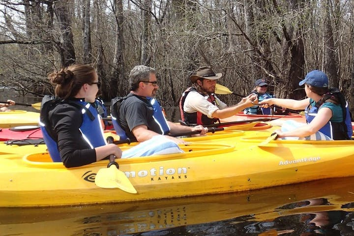 A group of kayakers paddling the cypress swamp in Myrtle Beach, SC