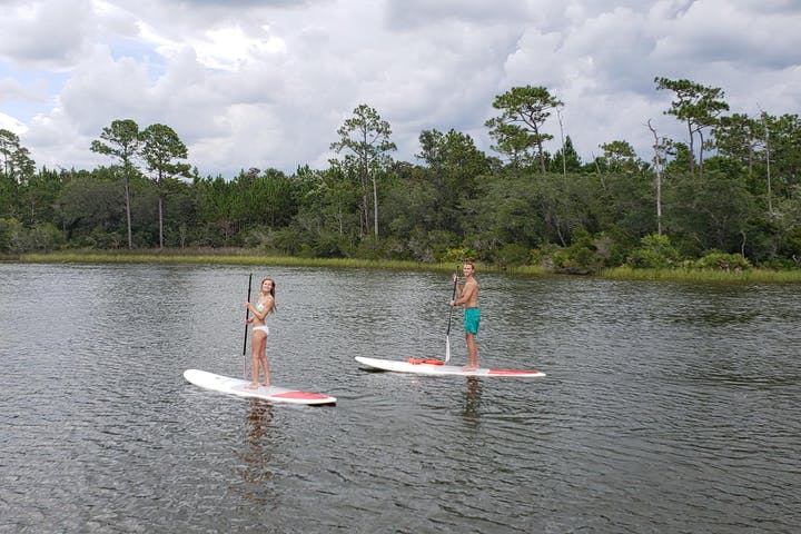Two people paddle boarding on the water