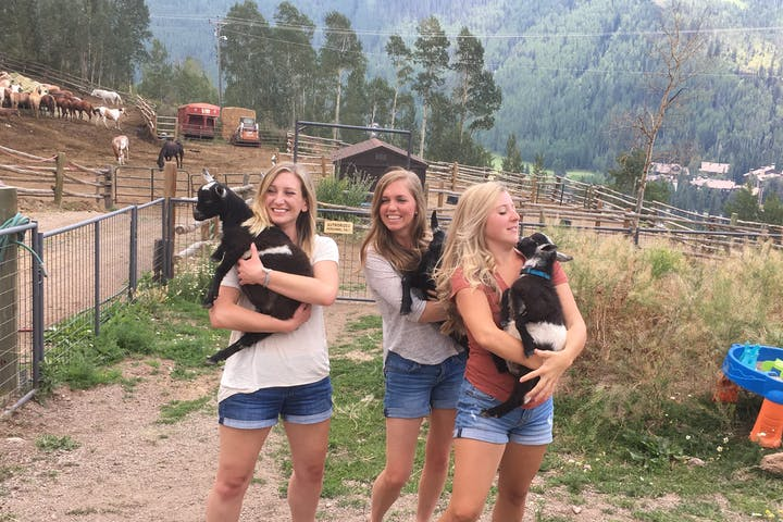 Three girls playing with baby goats