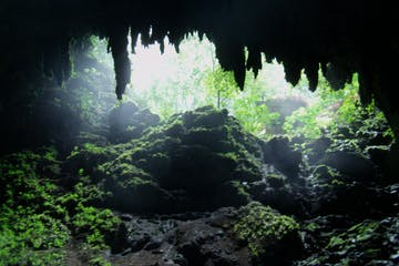 Camuy Cave Park