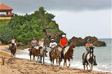 horsebackrides