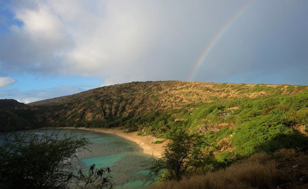 The best time to visit Maui | Boogie On Van Rentals
