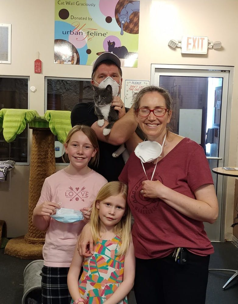 Emmett was adopted at The Cat Cafe