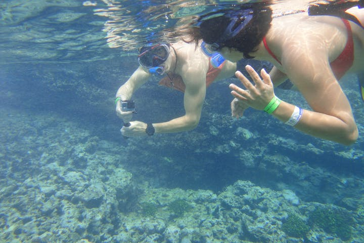 Divers with a go pro