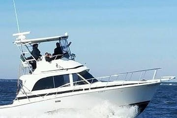 Mid Size Private Charter cruising