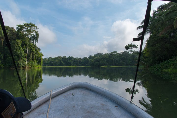 Point of view from boat during Panama river tour