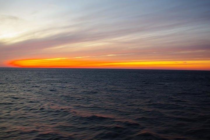 lake michigan fishing charters