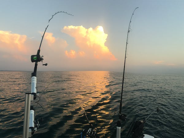 lake michigan fishing charters