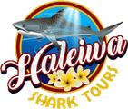 Haleiwa Shark Tours