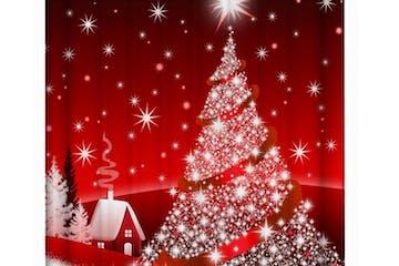 Christmas at sunnyside