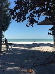 Beachfront shore in Sarasota, FL