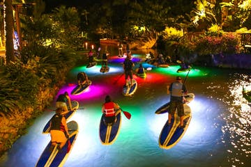 people paddle boarding in illuminated water at night