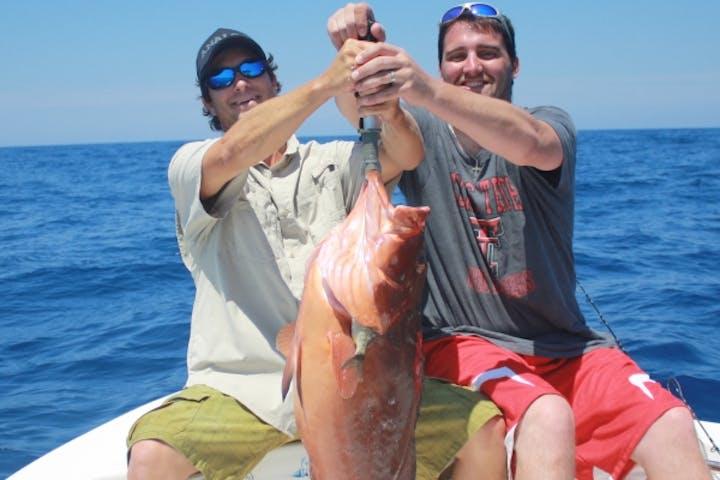 Ollie Raja Catch