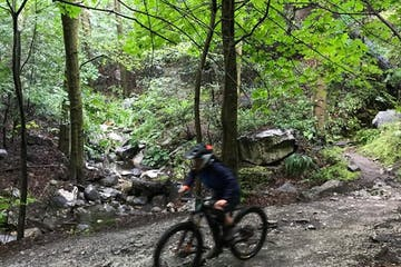 Mountain biker on trail in the woods