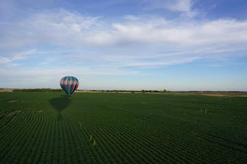 a large kite in an open field