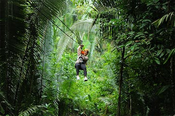 person ziplining through jungle