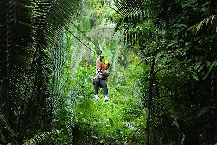 person ziplining through jungle