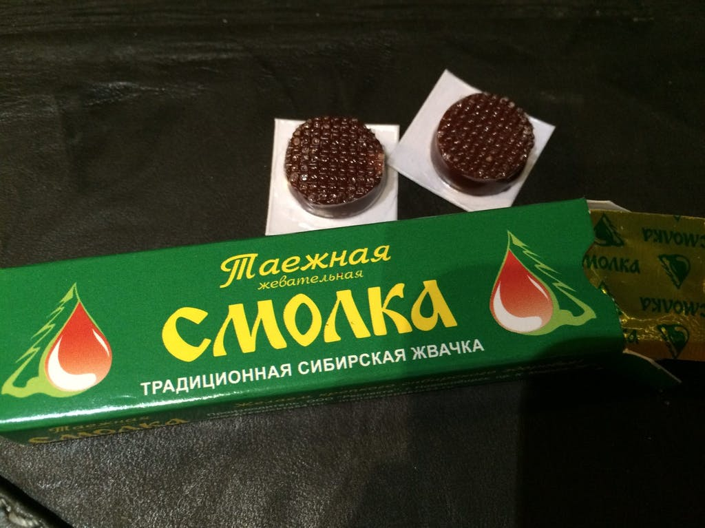 Siberian chewing gum, Smolka