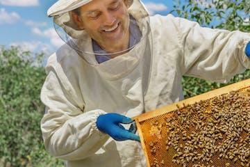 people enjoying Beekeeping Experience
